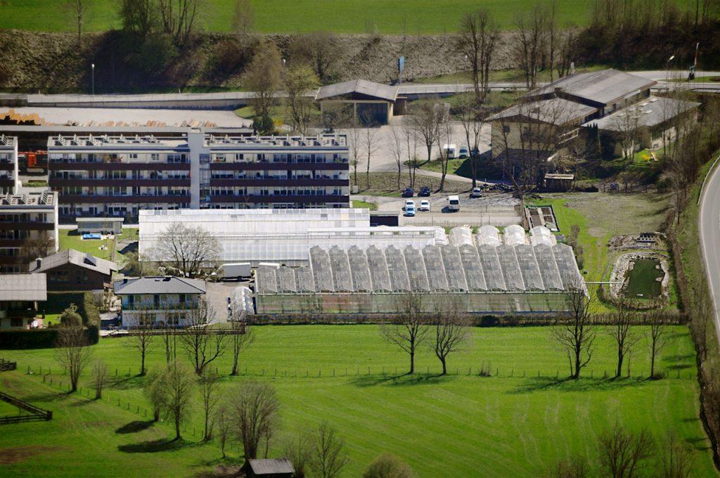 Startseite | Produktionsgärtnerei TAUTERMANN – St. Johann im Pongau / Salzburg image 1