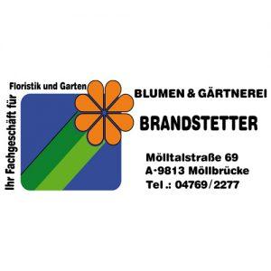 Hier erhältlich | Produktionsgärtnerei TAUTERMANN – St. Johann im Pongau / Salzburg image 4