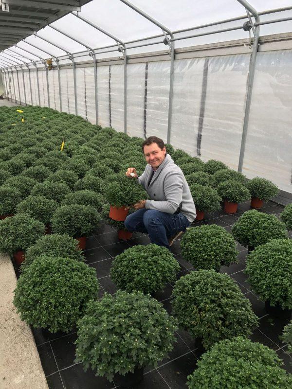 Wir verwenden positive Mikroorganismen zum Schutz unserer Pflanzen | Produktionsgärtnerei TAUTERMANN – St. Johann im Pongau / Salzburg image 2